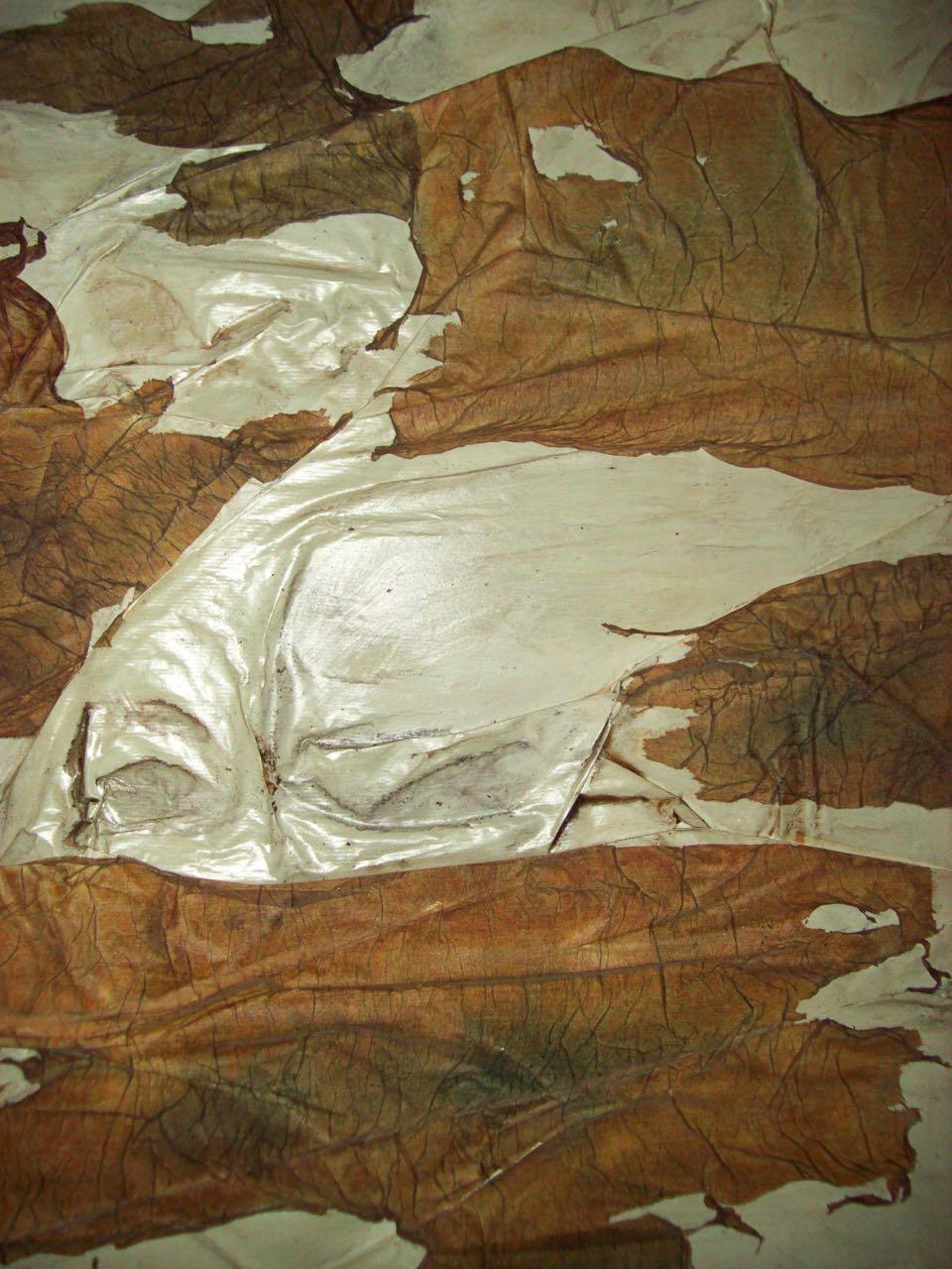 Ferdan Yusufi  Neoartgallery Agnese Bagnardi  – 9